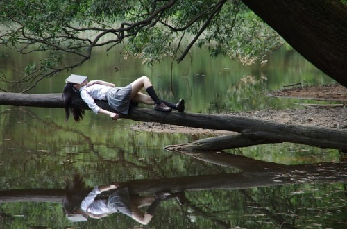 Sleepy reader on a log